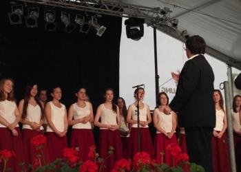 svajc2011-176