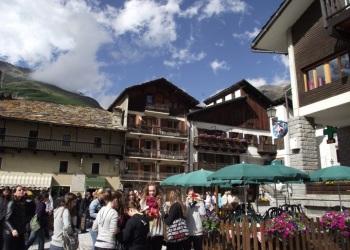 svajc2011-62